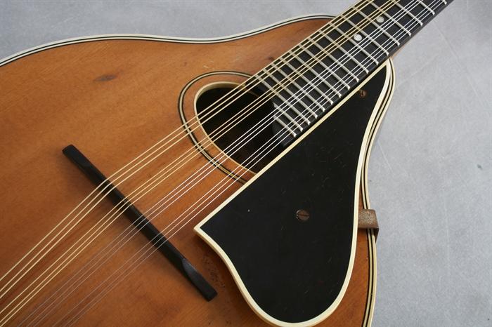 12 strenget guitar